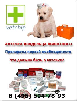 Аптечка владельза животных